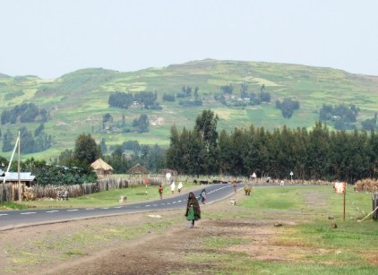 Road to the Blue Nile