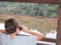Wildlife observatory