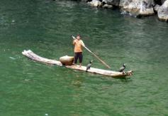 Li River - cormorant fisherman