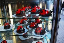 Edible ladybugs - Istanbul 3519920493
