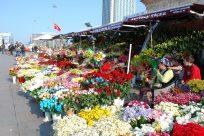 Flower Shop - Taxim Istanbul 3519920005