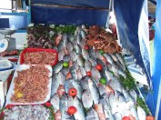 Fish ready for the grill in Essaouira, Morocco