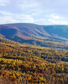 The blue ridge mountains of Virginia in the fall viewed from Skyline Drive