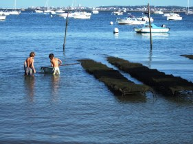 Kids fishing in the Bay of Arcachon in Cap Feret, France