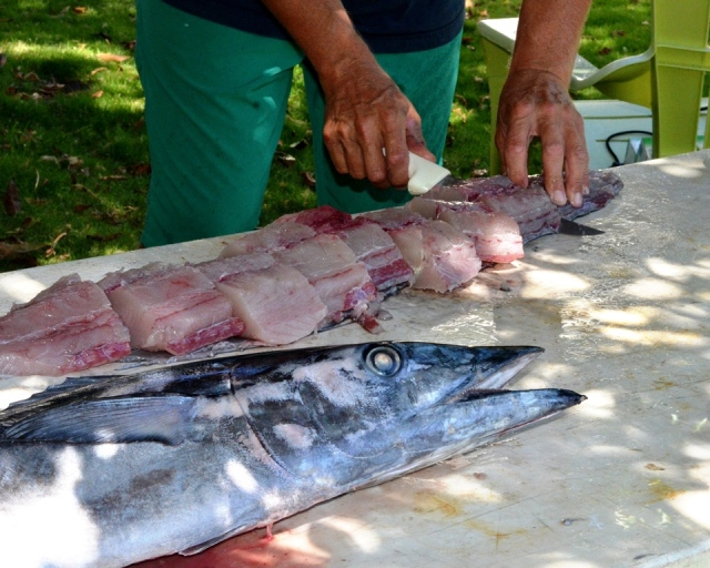 My neighbor Randy cuts up a 35-lb Ono he just caught.
